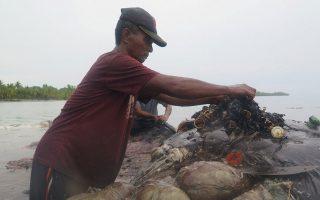 indonisia-nekri-falaina-me-115-potiria-kai-alla-1-000-plastika-antikeimena-sto-stomachi-tis0