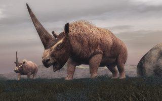 Τρισδιάστατη απεικόνιση του «σιβηρικού μονόκερου». (Πηγή φωτό: Shutterstock)