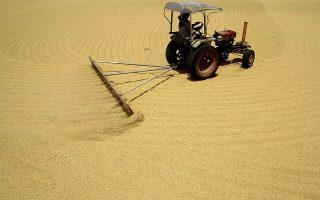 Η Κίνα άνοιξε την αγορά ρυζιού όταν έγινε μέλος του Παγκοσμίου Οργανισμού Εμπορίου το 2001, ωστόσο η απουσία πρωτοκόλλου με τις ΗΠΑ για την κατάσταση στην οποία θα πρέπει να είναι το ρύζι ώστε να θεωρείται ασφαλής η εισαγωγή του οδήγησε στην ουσιαστική απαγόρευση εισαγωγής αμερικανικού ρυζιού στην Κίνα.