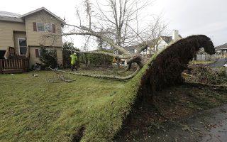Κάτω από το χαλί. Ενας ανεμοστρόβιλος πέρασε από το Port Orchard, στην Ουάσιγκτον προκαλώντας σοβαρές ζημιές σε κατοικίες και περισσότερο σε μεγάλα περήφανα δένδρα. (AP Photo/Ted S. Warren)
