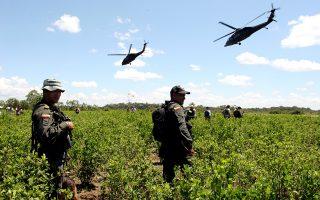 Anti-narcotic police stand in middle of a coca field as a helicopters secure the area in San Arturo in Colombia's southern jungle near San Jose del Guaviare, Friday, Aug.26,2005.The police are on a offensive in the area targeting cocaine labs and fields. Colombia is the world's largest cocaine producer. (AP Photo/Fernando Vergara)