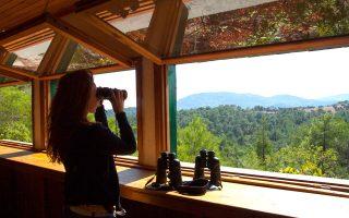 Παρατήρηση πουλιών στο Εθνικό Πάρκο Δαδιάς. (Φωτογραφία: ΟΛΓΑ ΧΑΡΑΜΗ)