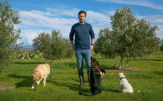 O Νικολά Νετιέν, γενικός διευθυντής της Φάρμας Ατσάς, μας υποδέχτηκε στον ελαιώνα μαζί με τα υπέροχα σκυλιά του. Φωτογραφίες: Γιάννης Κούρτογλου