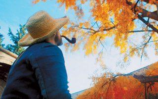 Η σχεδόν θρησκευτική σχέση του Βαν Γκογκ με τη φύση είναι από τα κύρια θέματα που αναδεικνύει η ταινία.