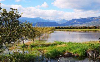 Μια τεράστια έκταση με καλλιέργειες έχει καλυφθεί με νερό στην περιοχή του Τημενίου στο Αργος. ΑΠΕ