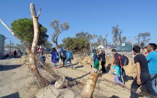 Πρόσφυγες  έχουν τοποθετήσει σκηνές στα κτήματα που έχουν καταπατήσει, περιμετρικά του κέντρου Πιστοποίησης και καταγραφής μεταναστών και προσφύγων στη Μόρια της Λέσβου και ζουν μέσα σε αυτά, τη Δευτέρα 16 Νοεμβρίου 2015. Τάση ελαφράς μείωσης των προσφυγικών και μεταναστευτικών ροών προς τη Λέσβο δείχνουν τα στοιχεία. Από χθες Κυριακή στις 6 το πρωί μέχρι και σήμερα Δευτέρα στις 6 το πρωί ο αριθμός των μεταναστών και προσφύγων που πιστοποιήθηκαν στο Κέντρο καταγραφής και πιστοποίησης της Μόριας έφτασε τους 3.510 ενώ ο αριθμός των όσων μπήκαν στη Λέσβο με βάρκες στο ίδιο διάστημα έφτασε τους 3.660. Στον περιβάλλοντα χώρο του Κέντρου περιμένοντας την είσοδο τους σε αυτό σήμερα είναι 3.860.  Έτοιμοι να αναχωρήσουν από το νησί είναι μετά από όλα τα παραπάνω 4.388 μετανάστες και πρόσφυγες.   Στο μεταξύ σημαντικά είναι τα προβλήματα που έχουν δημιουργηθεί στα ελαιοκτήματα περιμετρικά του Κέντρου Καταγραφής και πιστοποίησης από πολλές εκατοντάδες μετανάστες που έχουν μπει σε αυτά και επί μέρες περιμένουν εκεί την είσοδο τους στο κέντρο. Προκειμένου να ζεσταθούν έχουν καταστρέψει το σύνολο της φ