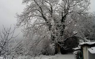 Χιονόστρωση στην Ορεινή Ναυπακτία - Εικόνα από το χωριό Άνω Χώρα