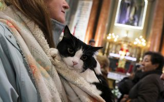 A woman and her cat listen to a mass at San Anton Church after being blessed by a priest as pet owners bring their animals to be blessed every year on the day of Spain's patron saint of animals, Saint Anthony, in Madrid, Spain, January 17, 2019. REUTERS/Sergio Perez