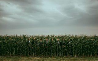 Φωτογραφία: Celestine Aerden/International Wedding Photographer of the Year/iwpoty.com