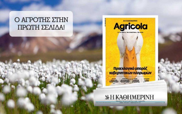 sto-agricola-poy-kykloforei-2299320