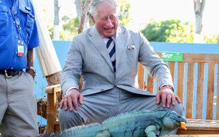 Βρε, βρε, βρε.... Με τεράστιο ενθουσιασμό παρατηρεί από κοντά ο πρίγκιπας Κάρολος ένα μπλε ιγκουάνα, στους Βοτανικούς Κήπους της Βασίλισσας Ελισάβετ. Ο πρίγκιπας και η σύζυγός του βρίσκονται σε επίσημη επίσκεψη στα νησιά Κέιμαν. Chris Jackson/Pool via REUTERS