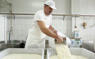 Ο Γιώργος Φάρρος, πρώην νταλικέρης, νυν τυροκόμος. (Φωτογραφία: Νίκος Κόκκας)
