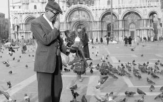Ο σπουδαίος Αμερικανός σκηνοθέτης και ηθοποιός Τζον Χιούστον ταΐζει τα δεκάδες περιστέρια της Πλατείας του Αγίου Μάρκου στη Βενετία, ενώ βρίσκεται καθ' οδόν για τη Μισουρίνα, όπου θα γυρίσει σκηνές για την ταινία του «Αποχαιρετισμός στα Όπλα» (Α Farewell to Arms), η οποία είναι βασισμένη στο σπουδαίο ομώνυμο μυθιστόρημα του Έρνεστ Χέμινγουεϊ, το 1957 (AP Photo/Fedele Toscani)
