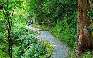 Περίπατος στο νησί Honshu στην περιοχή Chubu, πλούσια σε ιστορικά και πολιτιστικά τοπόσημα. (Φωτογραφία: AFP/VISUALHELLAS.GR)