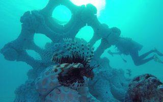 Τα πειραματικά τεχνητά κοράλλια της ολλανδικής Boskalis έχουν αρχίσει να κατοικούνται από την τοπική πανίδα.