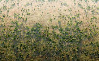 Το Μεγάλο Πράσινο Τείχος φιλοδοξεί να σταματήσει την επέκταση της ερήμου Σαχάρα σε καλλιεργήσιμα εδάφη.