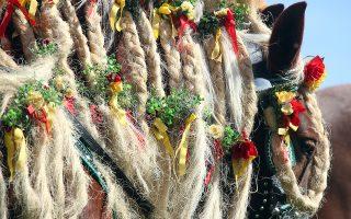 Μετά το Πάσχα. Στολισμένα τα άλογα με τις πλεξίδες τους κατάφορτες λουλούδια, στολισμένοι με παραδοσιακές στολές και οι αναβάτες. Η καθιερωμένη πορεία αλόγων για την γιορτή του Αγίου Γεωργίου τελέστηκε και πάλι στο Traunstein της Γερμανίας. REUTERS/Michael Dalder