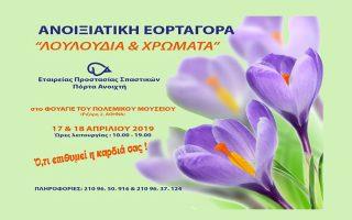 anoixiatiki-eortagora-tis-etaireias-prostasias-spastikon0