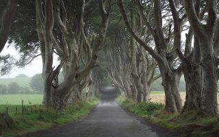 Το Dark Hedges είναι μία από τις πιο φωτογραφημένες περιοχές στη Βόρεια Ιρλανδία και δημοφιλές αξιοθέατο χάρη στο GoT