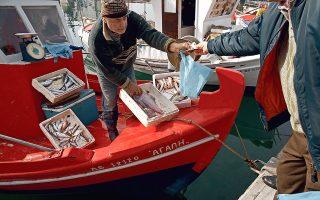 Αγορά ψαριών νωρίς το πρωί, κατευθείαν από τα καϊκια που επιστρέφουν από το ψάρεμα στον Παγασητικό κόλπο (Φωτογραφίες: Αλέξανδρος Αντωνιάδης, Νίκος Κόκκας)