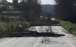 Πηγή φωτογραφίας: zarpanews.gr