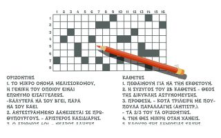 skitso-toy-dimitri-chantzopoyloy-24-05-190