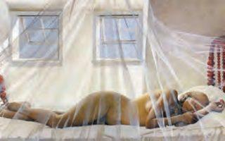 «Ονειροπόληση» (Day Dream), έργο που ο Αμερικανός ζωγράφος Αντριου Γουάιεθ (Andrew Wyeth, 1917-2009) φιλοτέχνησε το 1980.