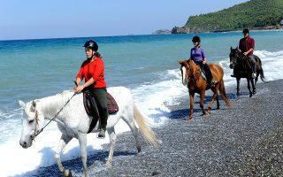 Βόλτες με τα άλογα στην ακροθαλασσιά, στο Ψαροπούλι της βόρειας Εύβοιας. (Φωτογραφία: ΒΑΓΓΕΛΗΣ ΖΑΒΟΣ)