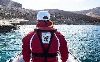 Σε πυρήνα βιοποικιλότητας στο Αιγαίο μετατρέπεται η Γυάρος, καθώς το υπουργείο Περιβάλλοντος προχώρησε την περασμένη εβδομάδα στη θέσπιση του πρώτου πλαισίου προστασίας του νησιού και της θαλάσσιας ζώνης που το περιβάλλει. Στο νησί επιτρέπονται μόνο η επιστημονική μελέτη και οι επεμβάσεις για τα διατηρητέα κτίρια των φυλακών, ενώ σε απόσταση τριών ναυτικών μιλίων επιτρέπεται υπό προϋποθέσεις η αλιεία, με άδεια του λιμεναρχείου.
