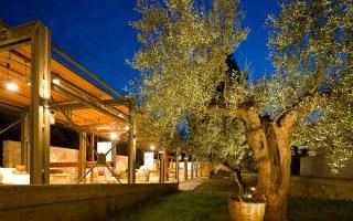 Σπάρτη: Μουσείο Ελιάς και Ελληνικού Λαδιού. ©  ΠΙΟΠ, Ν. Δανιηλίδης