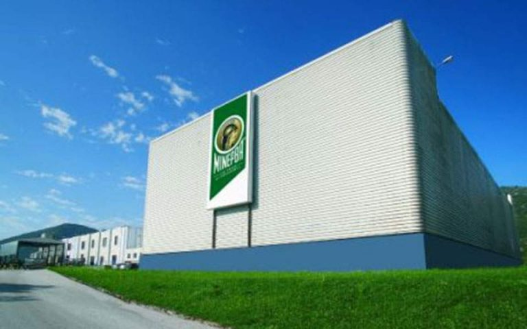 Δύο προσφορές για την εξαγορά της «Μινέρβα»