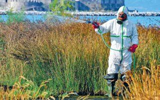 Συνεργείο της Περιφέρειας Πελοποννήσου ψεκάζει στην περιοχή του Ναυπλίου, στο πλαίσιο της καταπολέμησης κουνουπιών και κατ' επέκταση του ιού του Δυτικού Νείλου, τον περασμένο Ιούλιο.