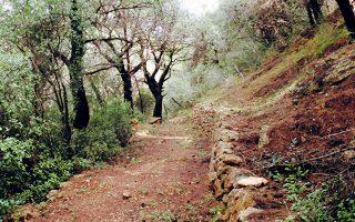 Από τα πιο ωραία μονοπάτια του δικτύου της Ελληνικής Εταιρείας Περιβάλλοντος και Πολιτισμού είναι εκείνο της Επιδαύρου.