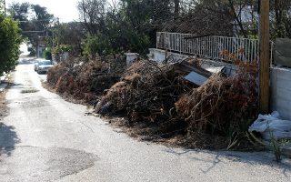 Σωροί κομμένων ξερών κλαδιών δέντρων βρίσκονται μπροστά από σπίτια, σε δρομάκι της  παραλία της Αργυρής Ακτής, στο Μάτι Αττικής, Τρίτη 23 Ιουλίου 2019. Ένας χρόνος συμπληρώνεται σήμερα από τη φονική πυρκαγιά που ξεκίνησε από την Καλλιτεχνούπολη και επεκτάθηκε ταχύτατα στο Μάτι και στο Κόκκινο Λιμανάκι με τραγικό απολογισμό τη ζωή 102 ανθρώπων. ΑΠΕ-ΜΠΕ/ΑΠΕ-ΜΠΕ/ΠΑΝΤΕΛΗΣ ΣΑΪΤΑΣ
