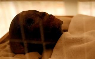 aigyptos-i-epichrysi-sarkofagos-toy-toytagchamon-syntireitai-gia-proti-fora-stin-istoria-tis0