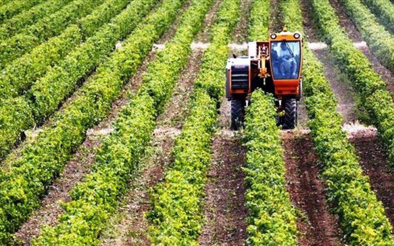 Δράση για μεταποίηση, εμπορία και ανάπτυξη γεωργικών προϊόντων
