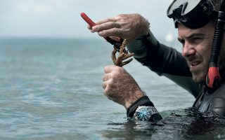 oris-aquis-great-barrier-reef-iii-limited-edition0