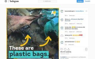 Η ανάρτηση του δημοφιλούς ηθοποιού σε μέσο κοινωνικής δικτύωσης, που δείχνει απορρίμματα και μπάζα στον βυθό της θάλασσας της Ανδρου.