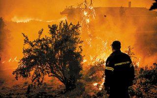 Σκληρή μάχη με τις φλόγες έδωσαν από νωρίς χθες οι πυροσβέστες προκειμένου να κρατήσουν τη φωτιά μακριά από τις αυλές των σπιτιών στα χωριά Μακρυμάλλη, Κοντοδεσπότι, Πλατάνια και Σταυρός, από τα οποία οι κάτοικοι πρόλαβαν να απομακρυνθούν εγκαίρως. Στην επιχείρηση κατάσβεσης της πυρκαγιάς στην Εύβοια συμμετείχαν πάνω από 220 άνδρες της Πυροσβεστικής με 75 υδροφόρες, επτά ομάδες πεζοπόρων, 6 αεροσκάφη και 6 ελικόπτερα, καθώς και μηχανήματα έργου και υδροφόρες των δήμων.