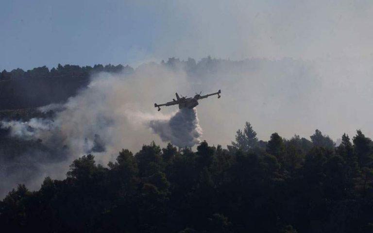 Πυρκαγιά σε δασική έκταση κοντά στο ελικοδρόμιο του Μαραθώνα