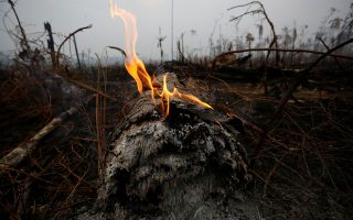A tract of Amazon jungle is seen after a fire in Boca do Acre, Amazonas state, Brazil August 24, 2019. REUTERS/Bruno Kelly