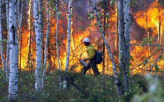 Alaska Fire Service smoke jumper John Dibert walks along the edge of a burn-out he lit to create defensible space around a home south of Nenana, Alaska, on Saturday, June 10, 2006. The Parks Highway Fire has burned 32,000 acres and three structures. (AP Photo/Fairbanks Daily News-Miner, Sam Harrel)