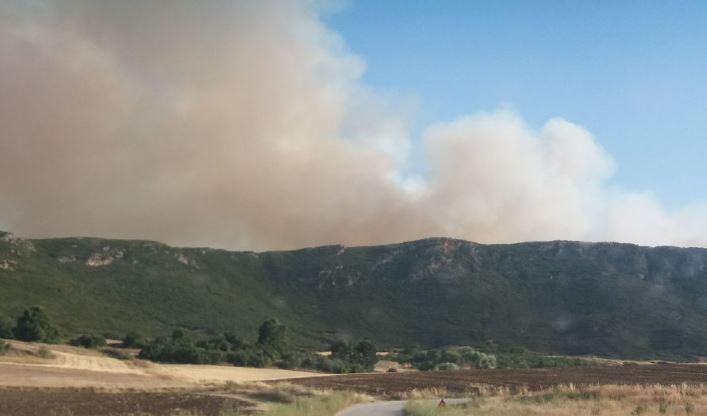Υπό έλεγχο η πυρκαγιά στην Τιθορέα Φθιώτιδας – Ενδείξεις για εμπρησμό