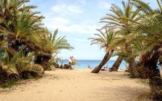 Η εξωτική παραλία του φοινικοδάσους Βάι. (ΦΩΤΟΓΡΑΦΙΑ: ΓΙΑΝΝΗΣ ΧΑΤΖΗΙΩΑΝΝΟΥ)