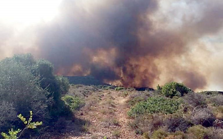 Σε ύφεση η πυρκαγιά στην Ελαφόνησο – Εκκενώθηκαν οικισμός και κάμπινγκ (βίντεο)