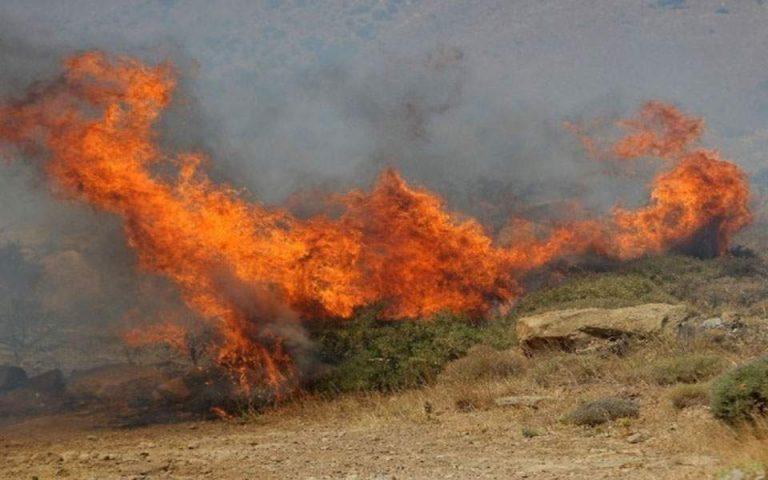 Πυρκαγιά στην Καβησό του Δήμου Αλεξανδρούπολης