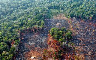 Αποψιλωμένη έκταση παρθένου δάσους κοντά στην κωμόπολη Χουμαΐτα της πολιτείας της Αμαζόνας, στη Βόρεια Βραζιλία.
