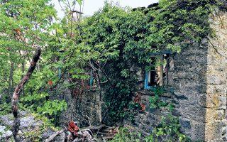 Ενα χωριό της Ελλάδας που όχι απλά δεν κατοικείται, αλλά σκεπάστηκε ολόκληρο από την άγρια φύση. Στην πινακίδα που στέκεται ακόμη όρθια, το όνομα έχει ξεθωριάσει και μόλις διαβάζεται ο προορισμός: Σέλλος. Το τοπίο στον Σέλλο παντού το ίδιο: εκτάσεις, μονοπάτια, αυλές, σπίτια σκεπασμένα από βλάστηση.