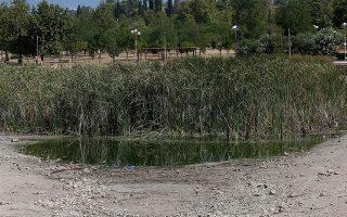 Η λειψυδρία απειλεί την τεχνητή λίμνη στο πάρκο Τρίτση, Αθήνα Τετάρτη 14 Αυγούστου 2019. Το δημοτικό συμβούλιο του Δήμου Ιλίου έχει καταθέσει μηνυτήρια αναφορά κατά παντός υπευθύνου για τα φαινόμενα εγκατάλειψης του πάρκου. ΑΠΕ-ΜΠΕ/ΑΠΕ-ΜΠΕ/ΟΡΕΣΤΗΣ ΠΑΝΑΓΙΩΤΟΥ