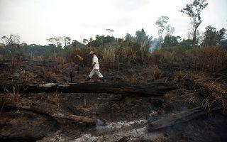 Μικρό δείγμα της καταστροφής που συντελείται στη Βραζιλία, από τις αποτεφρωμένες εκτάσεις στο Πόρτο Βέλο της Αμαζονίας. Σύμφωνα με ειδικούς, μόνο με ισχυρές βροχές μπορούν να αναχαιτιστούν οι μεγάλες πυρκαγιές.